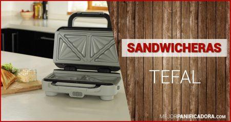 Sandwichera Tefal